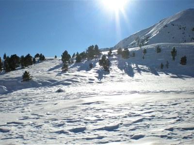 Estacions d'esquí nòrdic